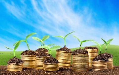 העונה החמה – למנף את החופש הגדול להגדלת הרווחים!